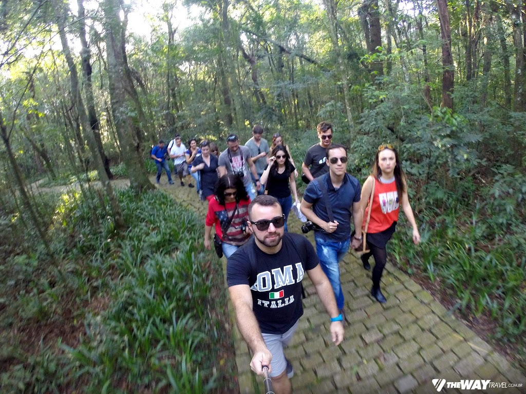 Caminhando no Bosque do Papa